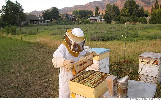140311130423-bees-bros-bitcoin-620xa